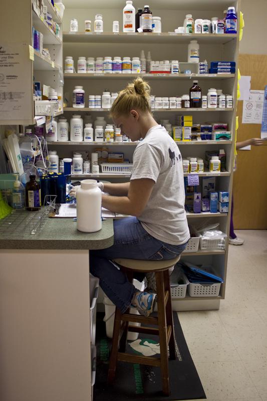 carrboro plaza veterinary clinic renovation kennedy